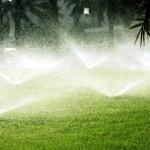Системы полива растений, их виды и назначение